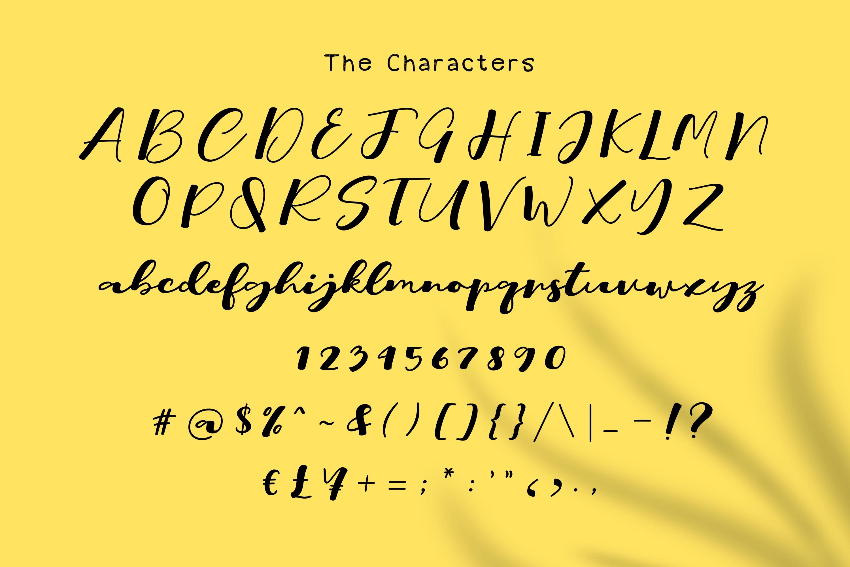 Rich // Script Typeface example image 5