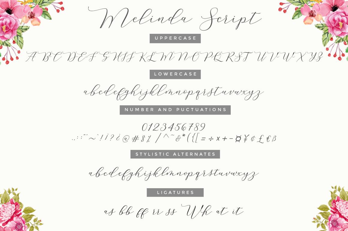 Melinda Script UPDATE example image 8