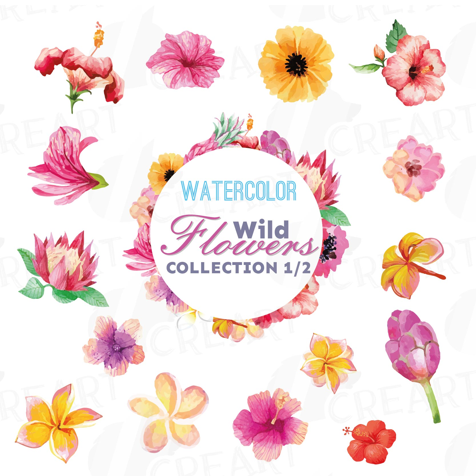 Watercolor wild flowers clip art pack, exotic watercolor flowers valentine clip art. Eps, png, jpg, svg,  vector files included. Part 1/2 example image 1