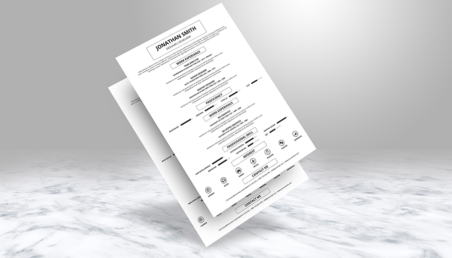 The Resume example image 3