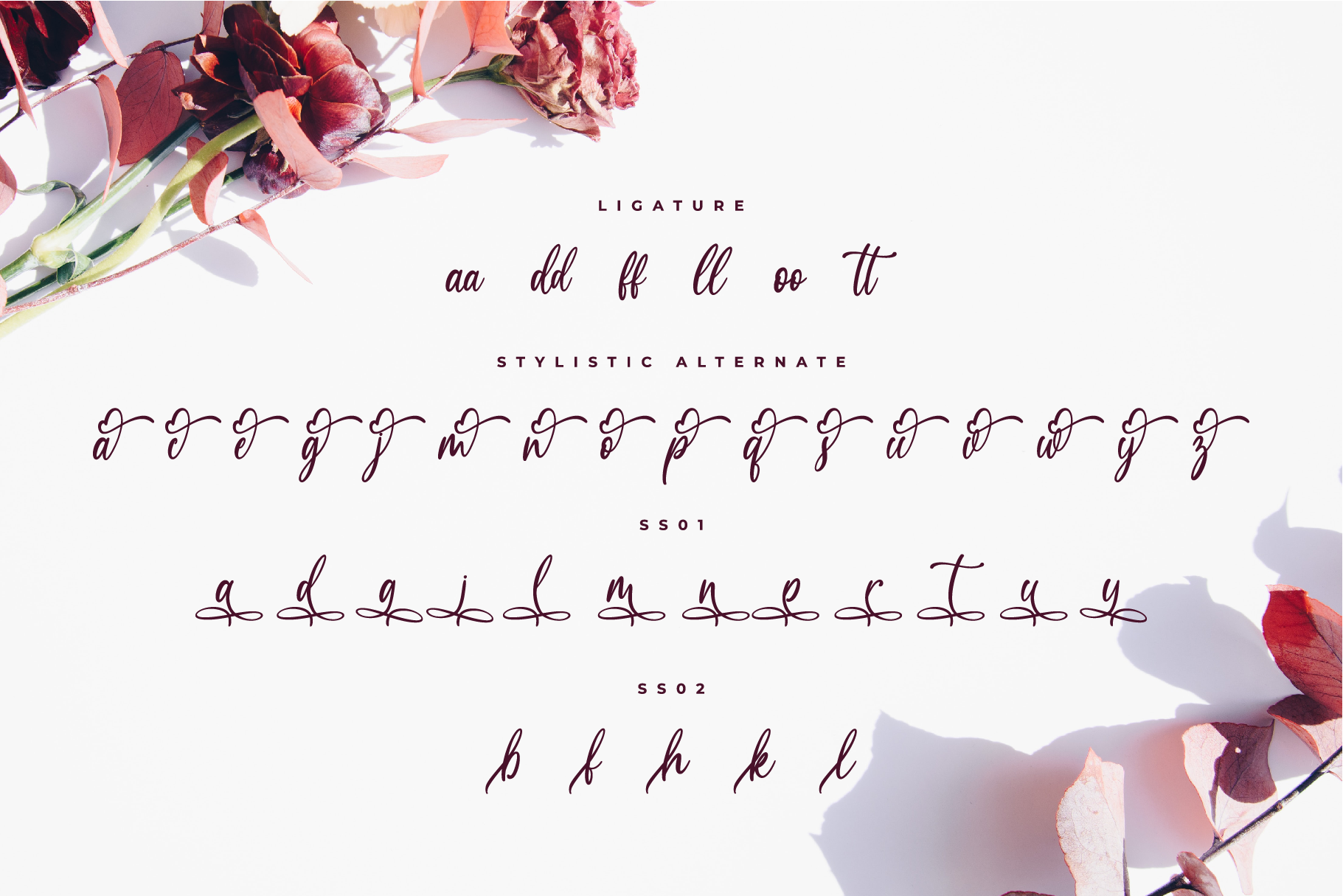 Medalion Calligraphy Font example image 8