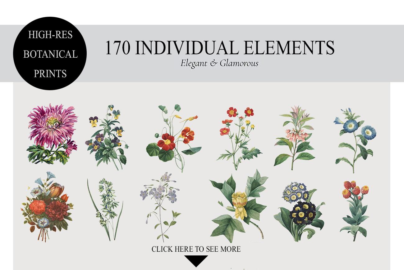 Botanicum - V.2|Elements Botanic example image 2