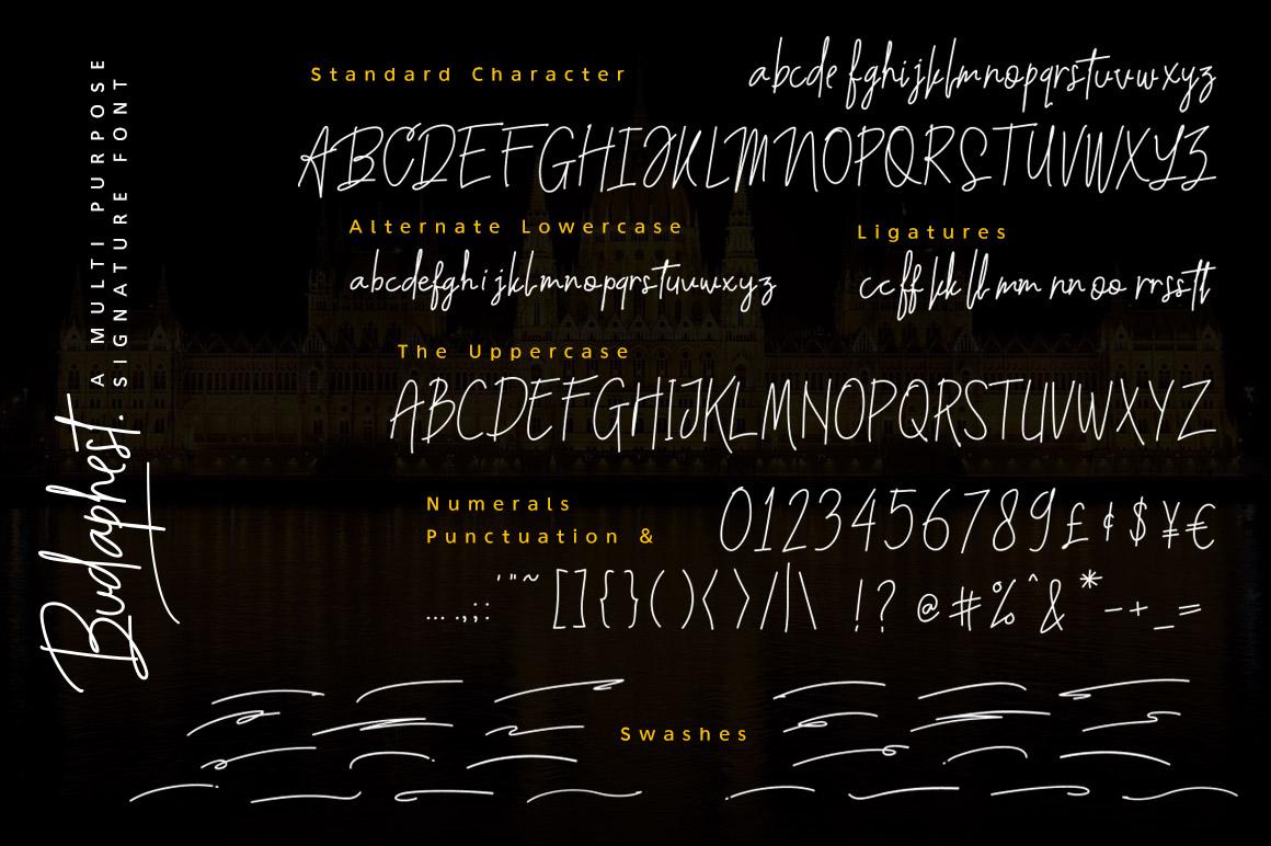 Budaphest Script Font example image 8