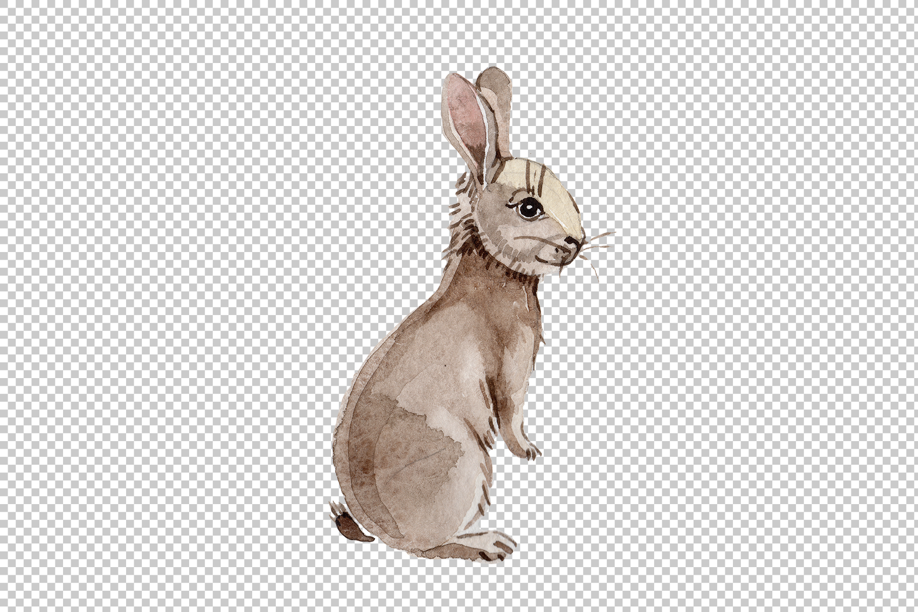 Easter bunny Watercolor png example image 6