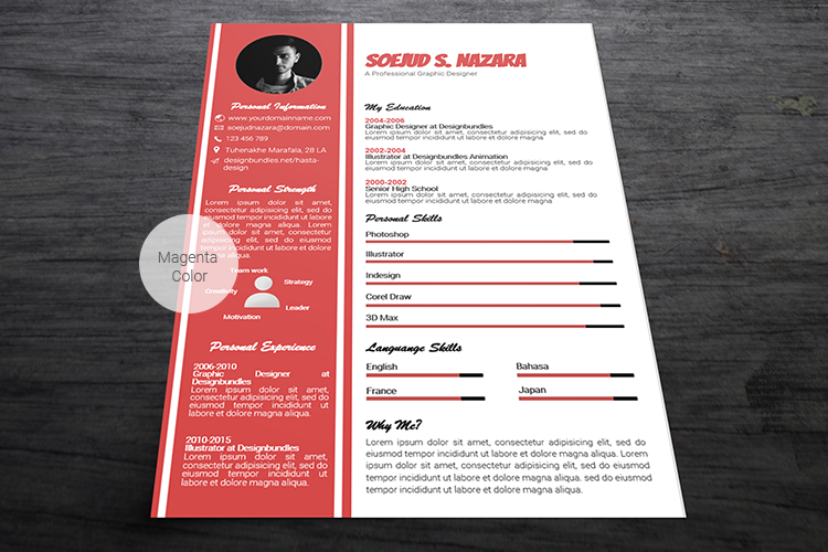 A4 Resume Templates Word example image 8