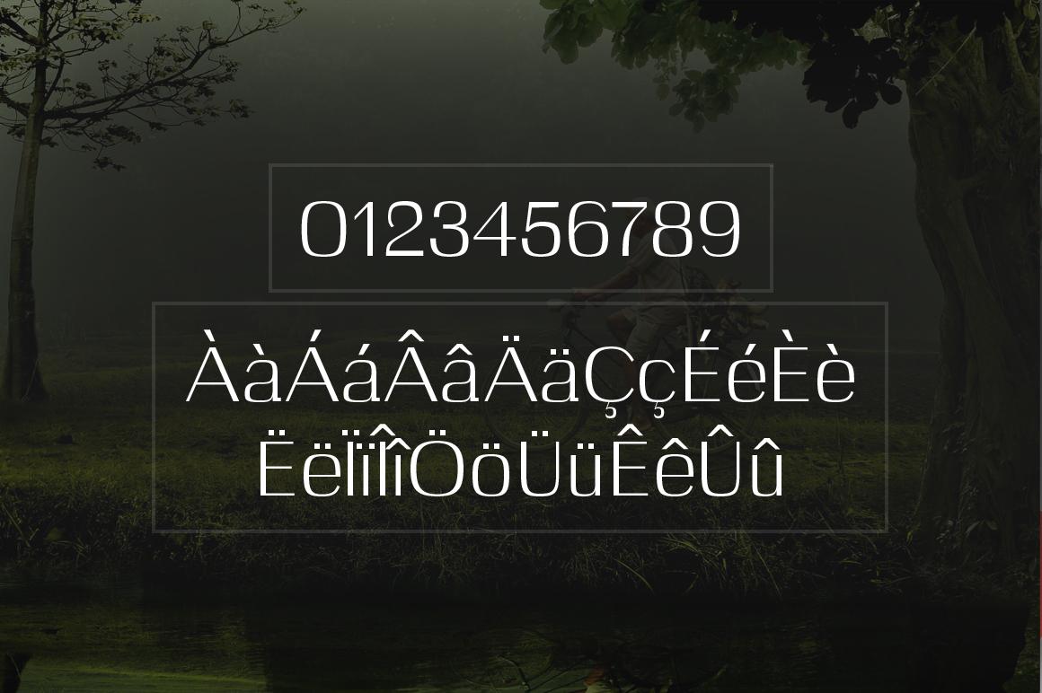 Celosia example image 7