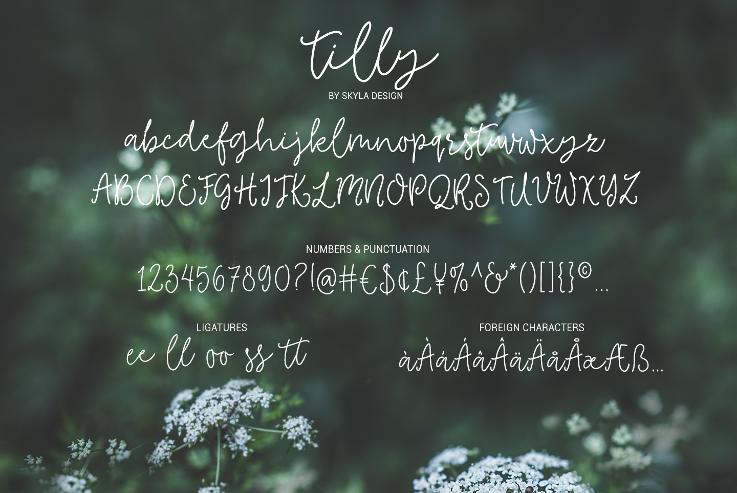 Tilly, a lovely, romantic, wedding font with bonus clipart example image 4