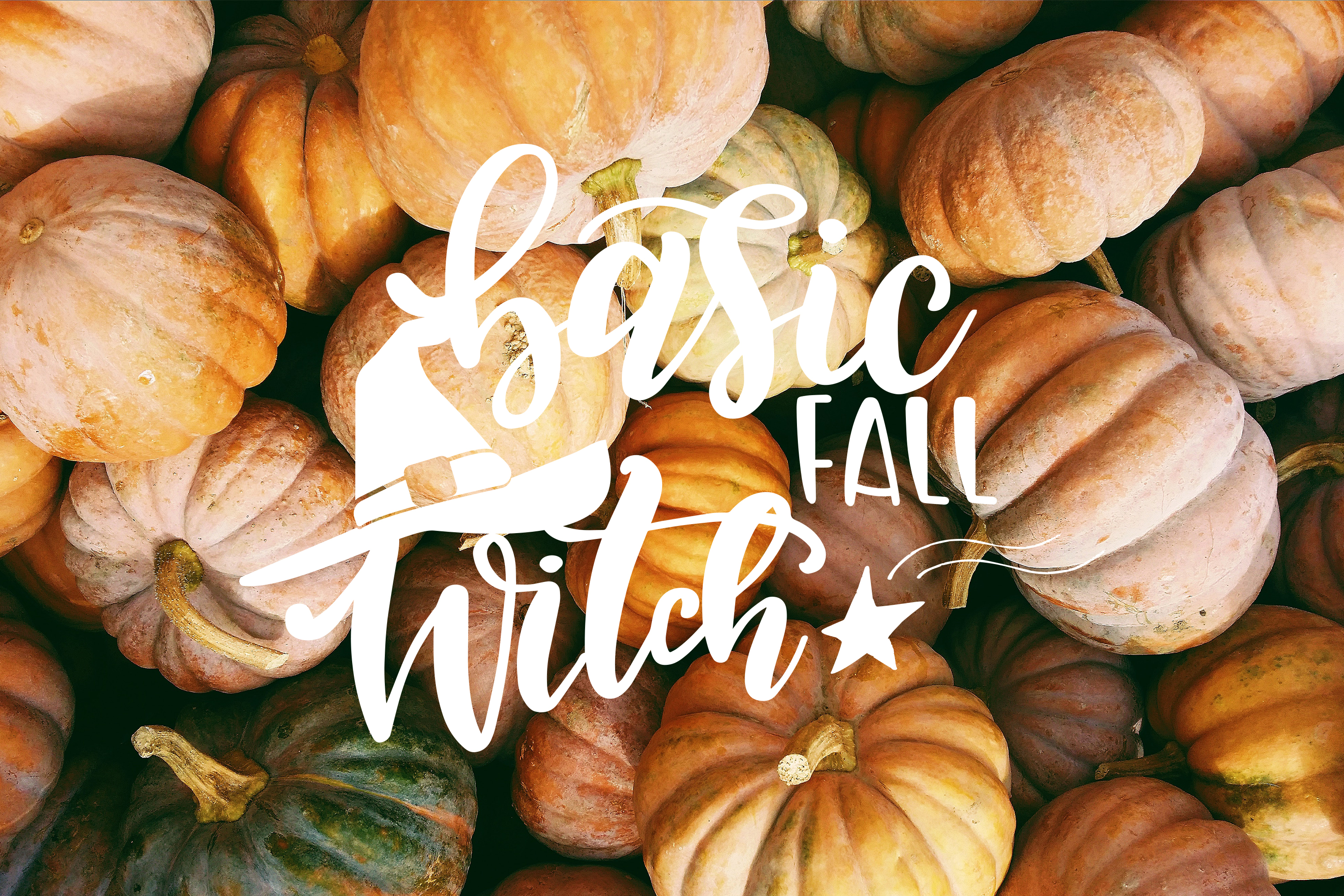 Fall svg BUNDLE BIG set of 80 quotes Autumn Thanksgiving example image 12