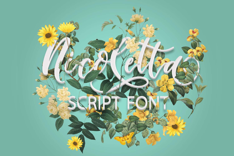Nicoletta Script - A Handwritten, Multilingual Script Font example image 11