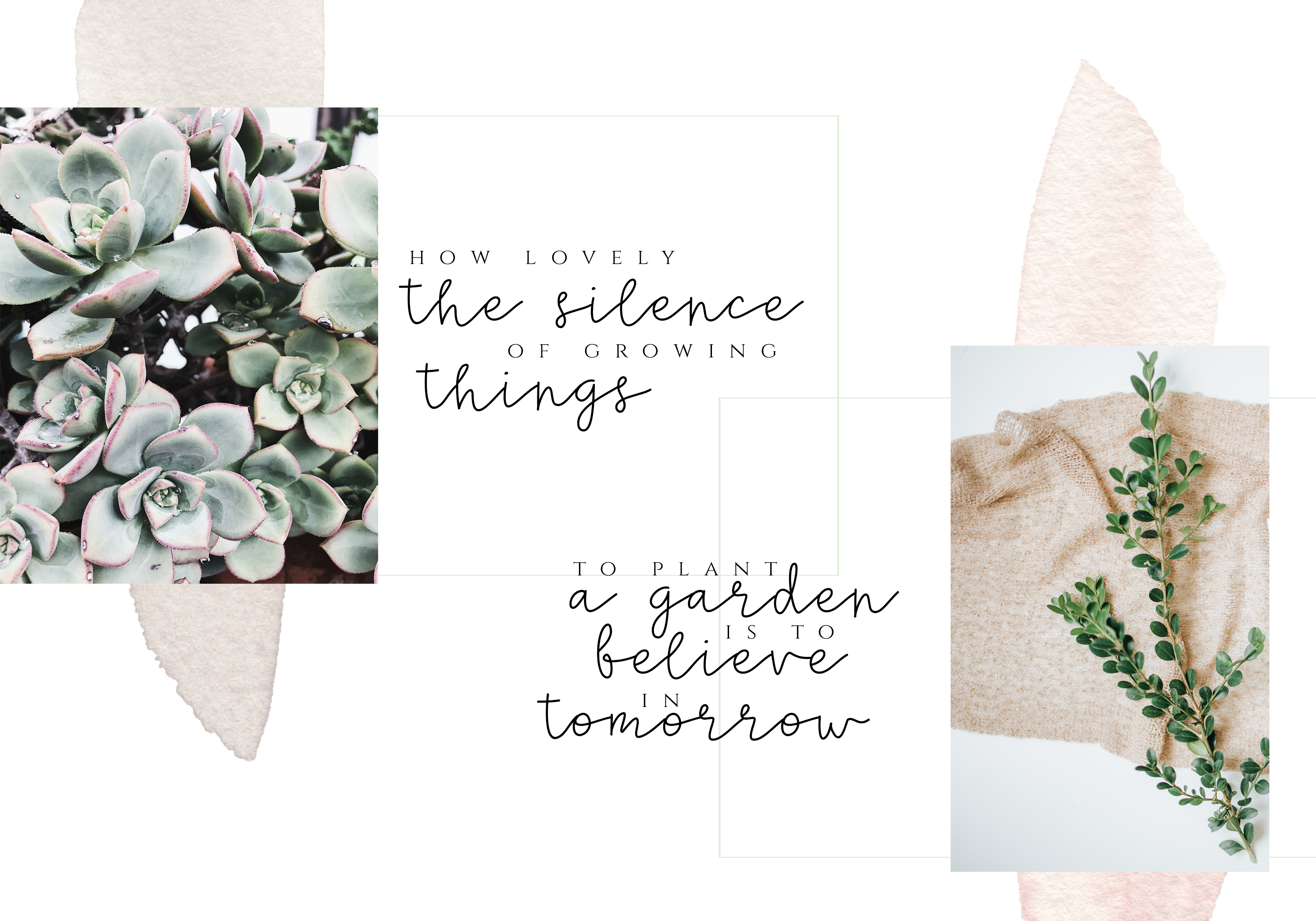 Silence - Delicate Script Font example image 3