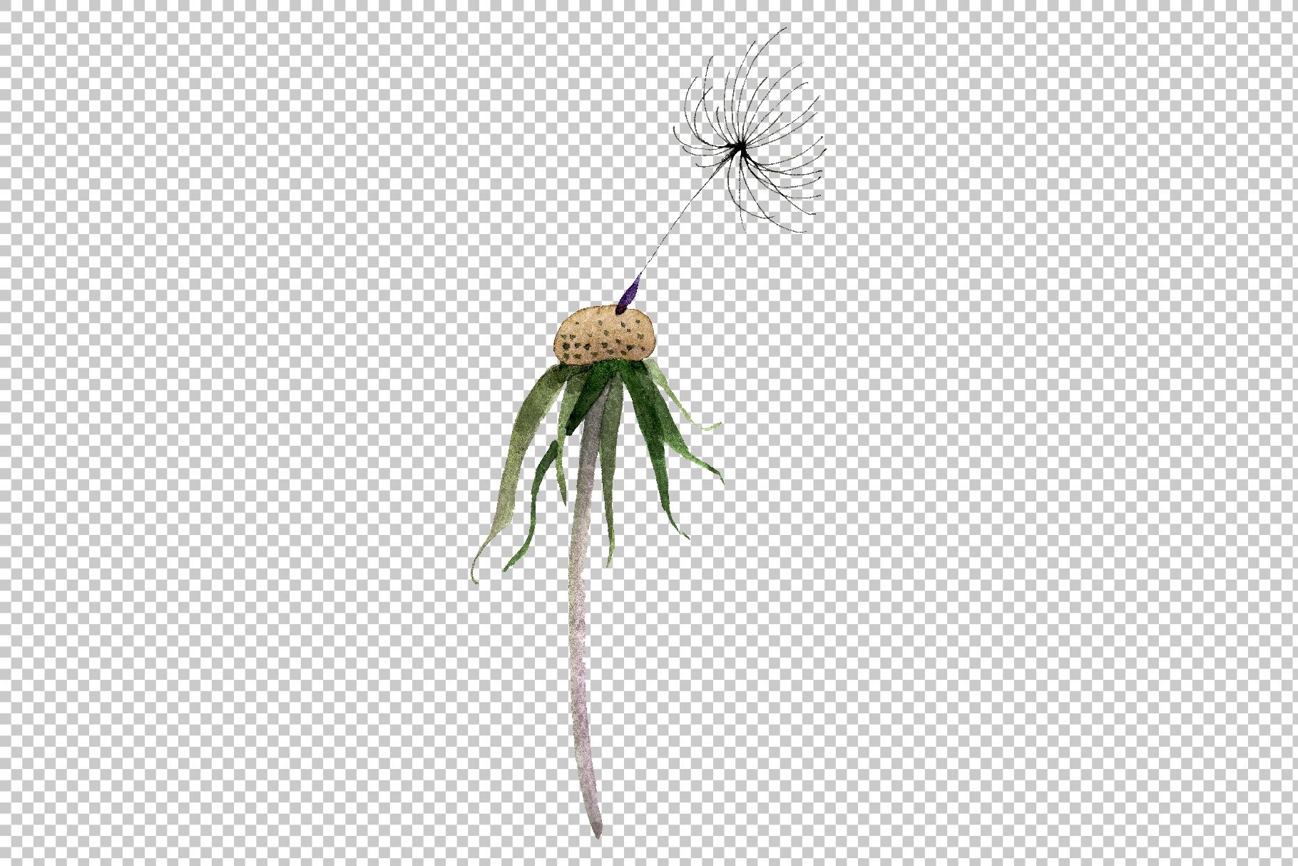 Bouquet rainbow dandelion watercolor png example image 8