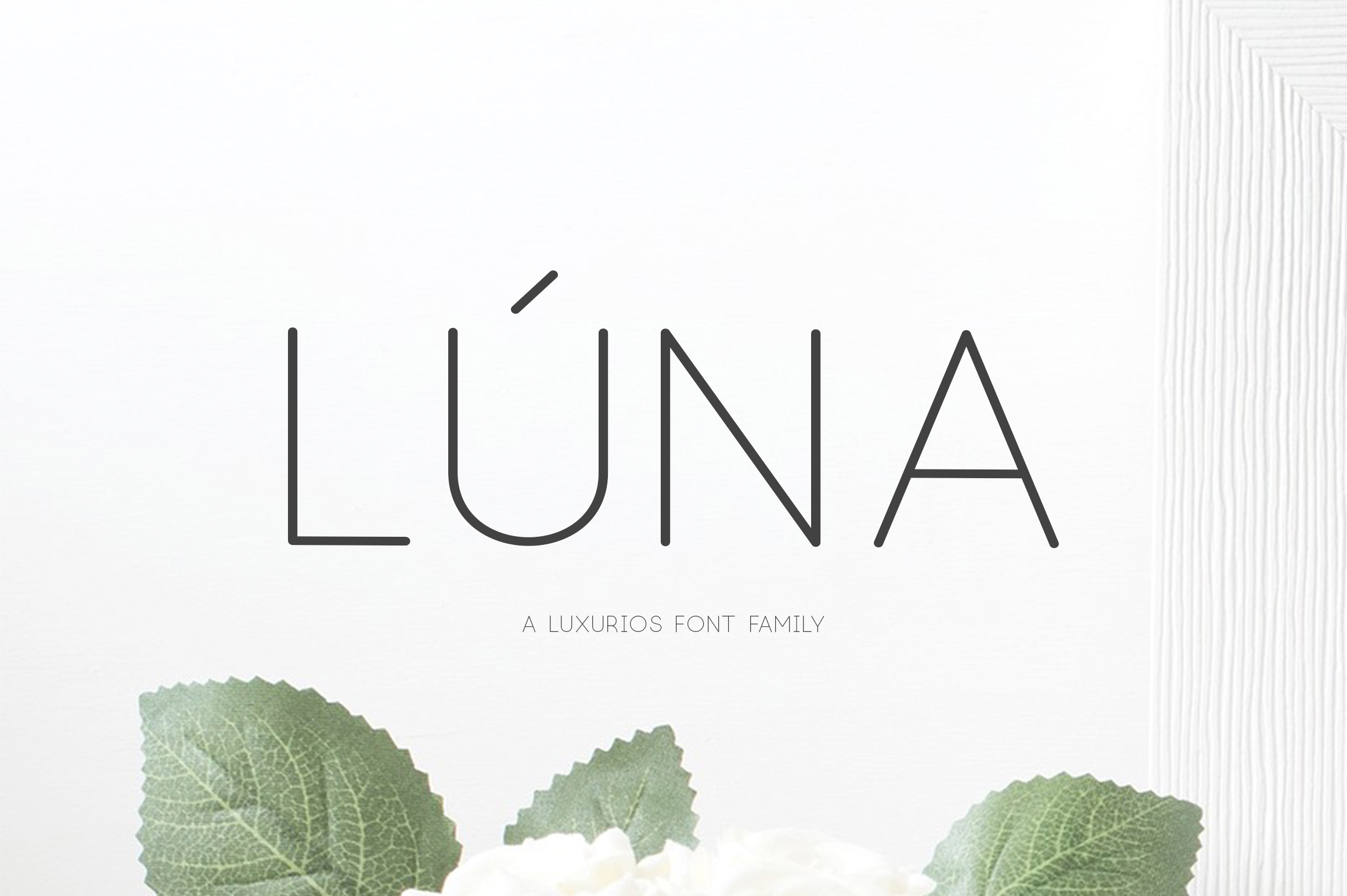 Lúna - A Luxurios Font Family example image 1