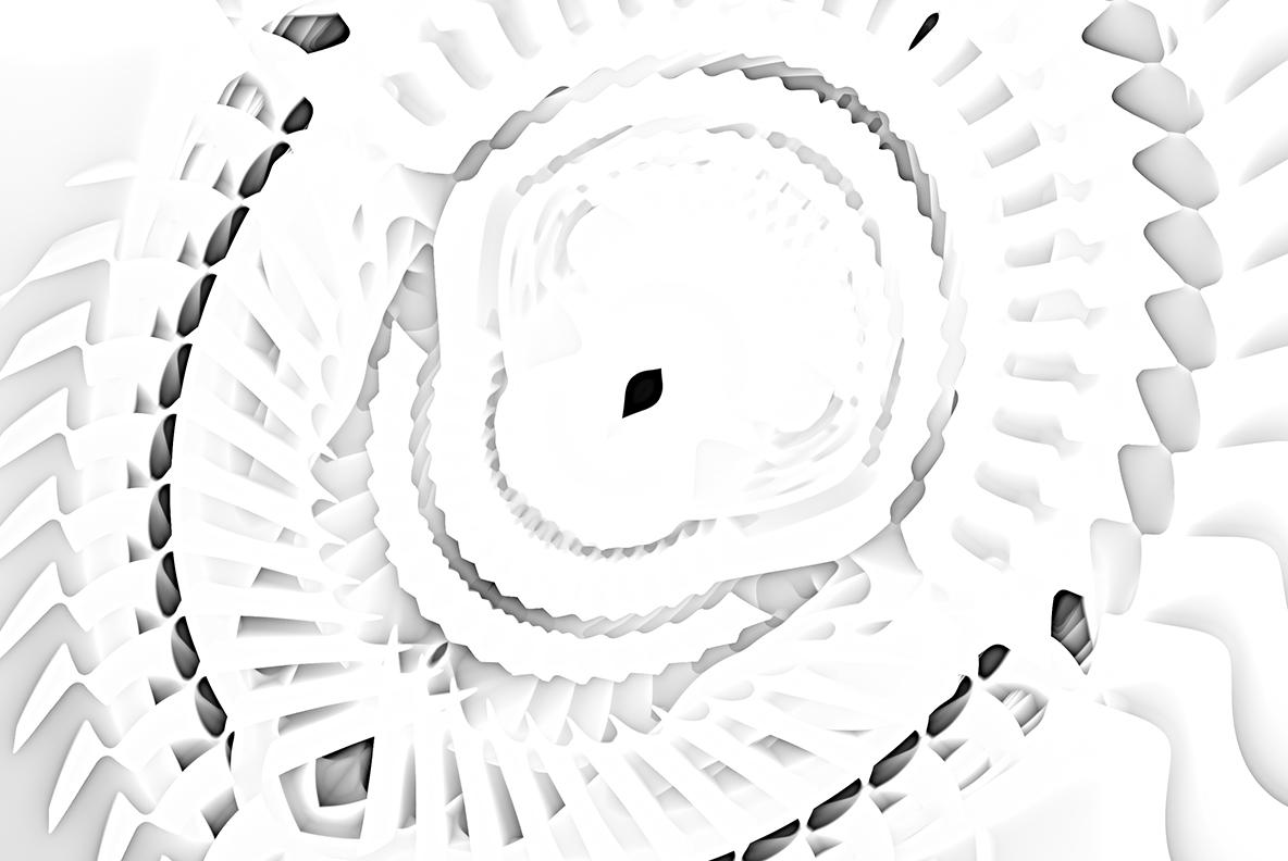 White backgrounds 5 example image 7