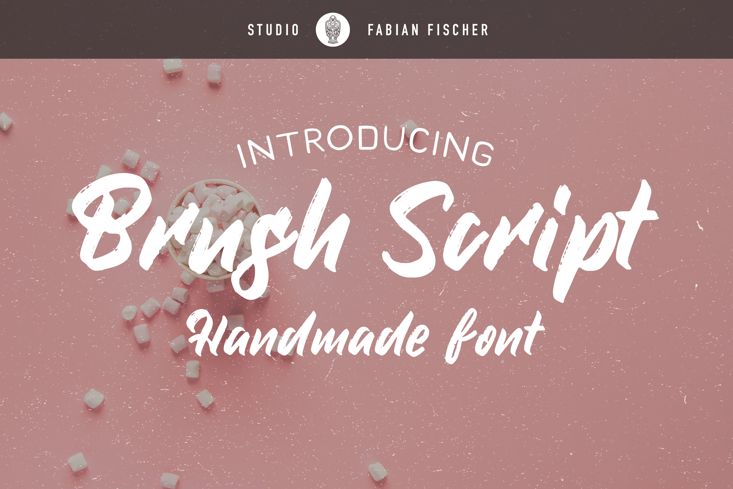Brush Script - Handmade font example image 1