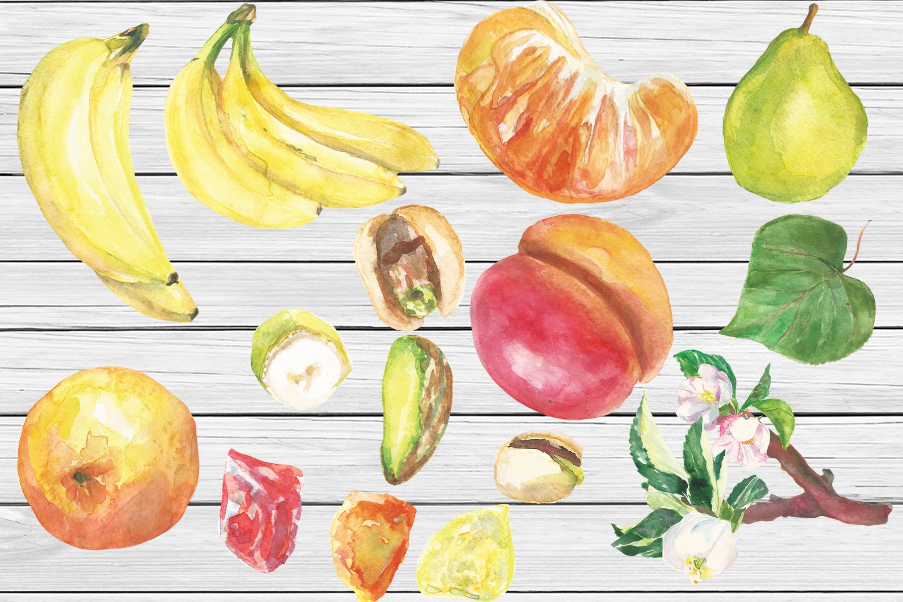 Watercolor Tu Bishvat digital clip art example image 4