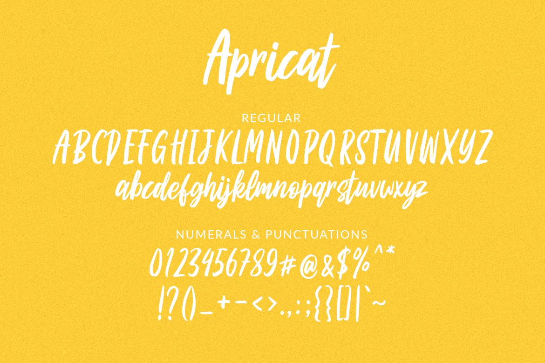Apricat Brush Script example image 6