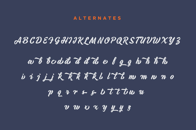 Urbax Script Font example image 8