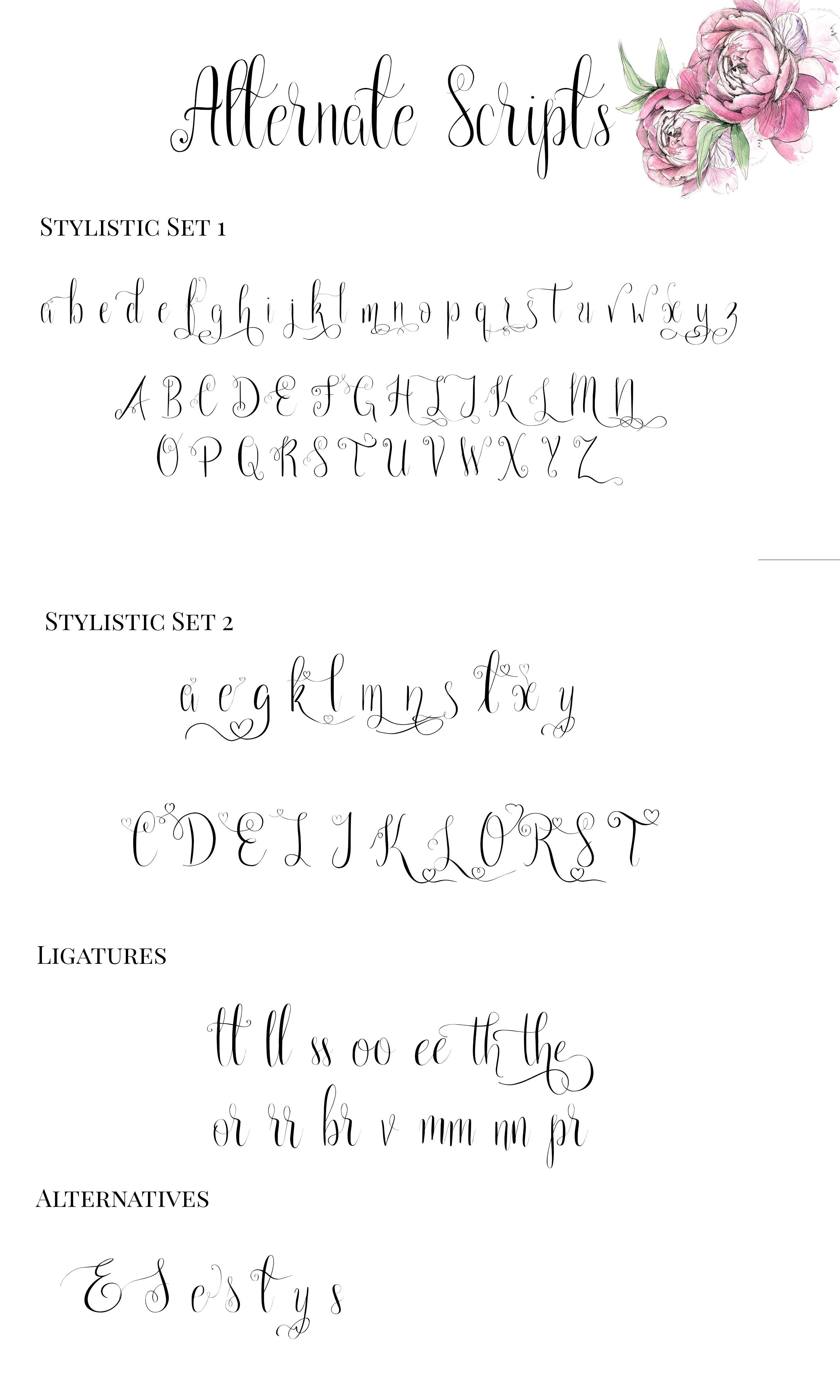 Paris in the Springtime Script Font example image 3