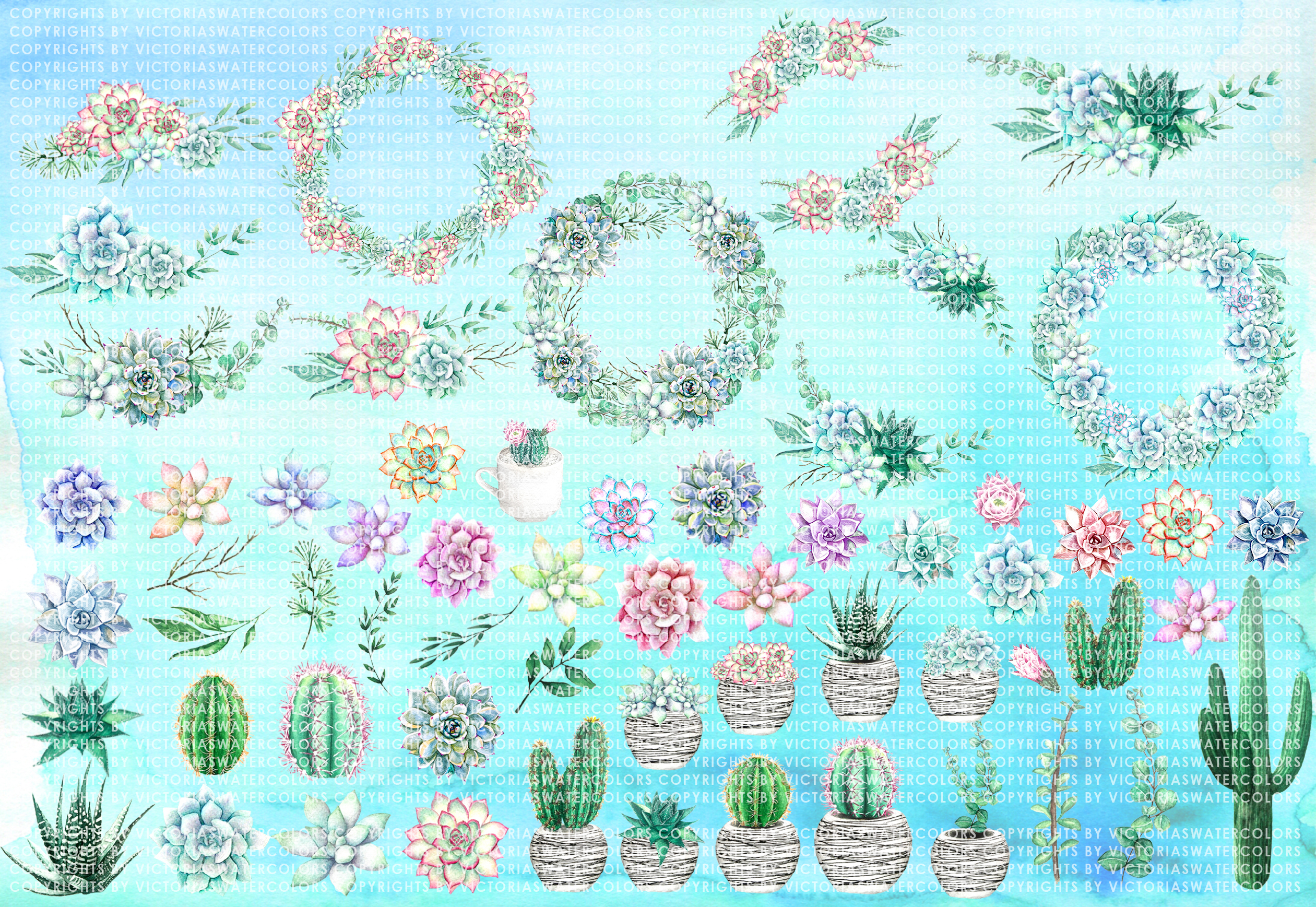 60 Watercolor Succulents and Cactus Bundle Watercolor Flowers  example image 2