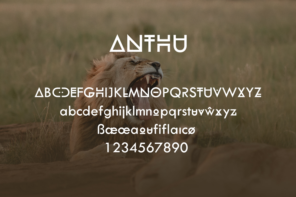 Anthu African Font example image 3