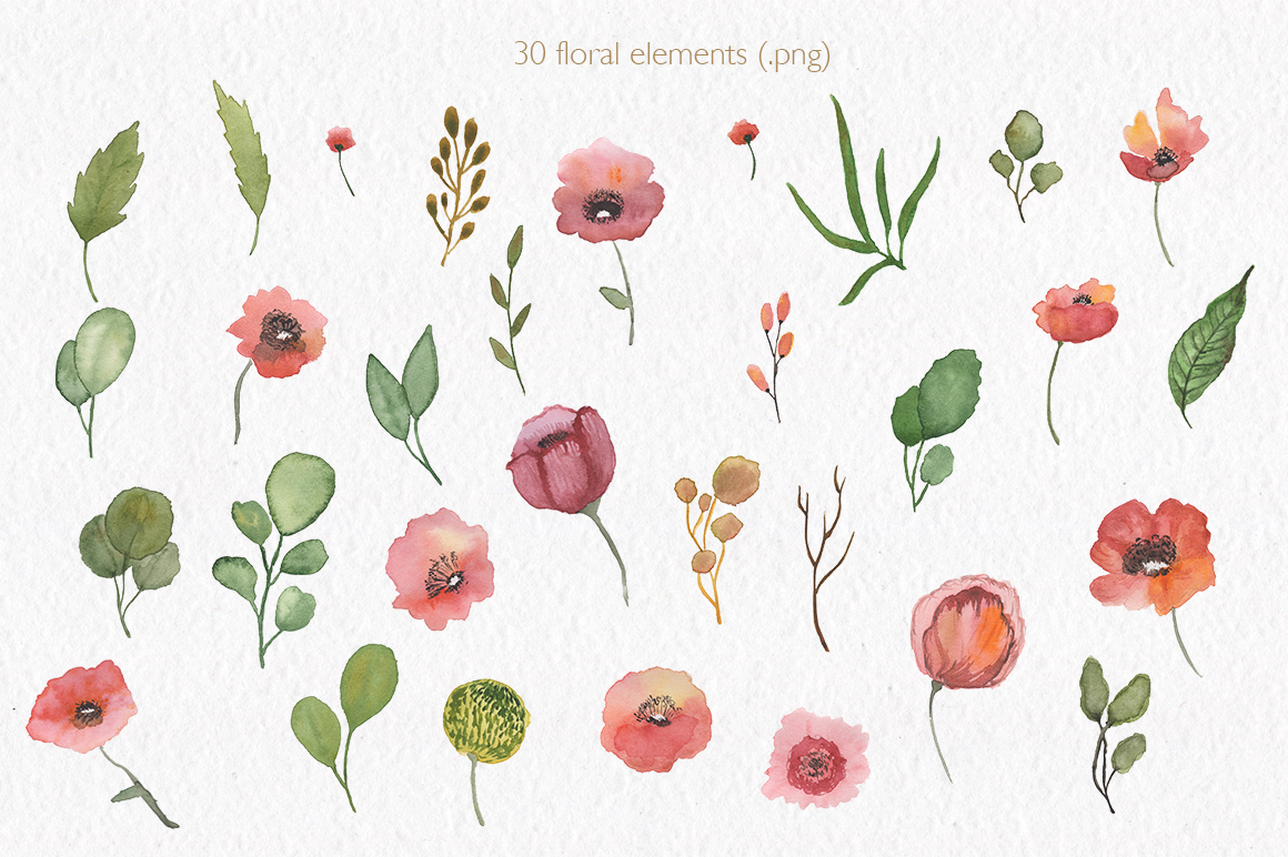 Spring florals. Watercolor floral collection. example image 3