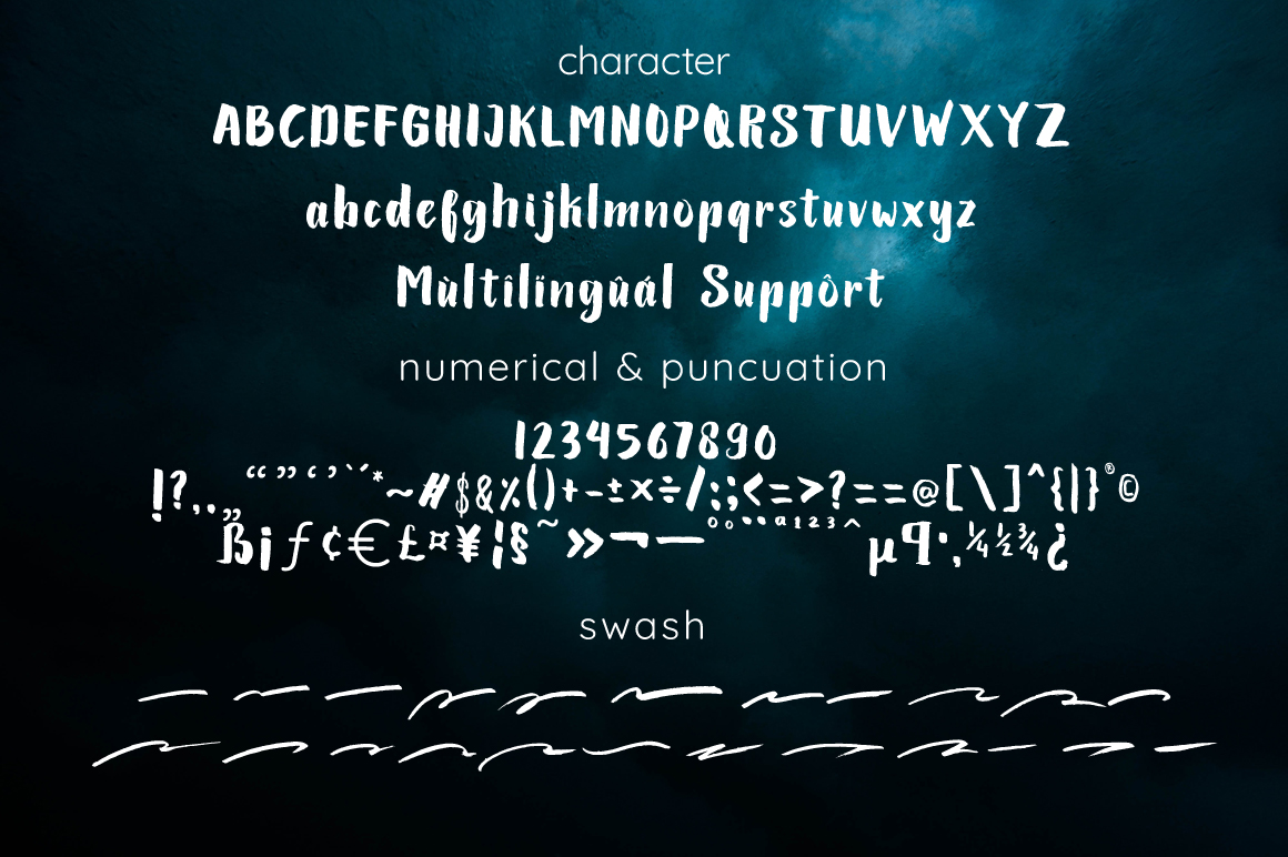 Lariess - Brush Font With Swashes example image 2