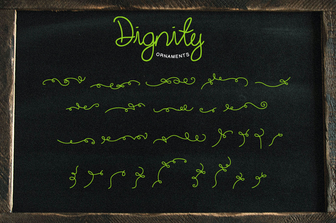 Dignity Cursive + Bonus example image 5