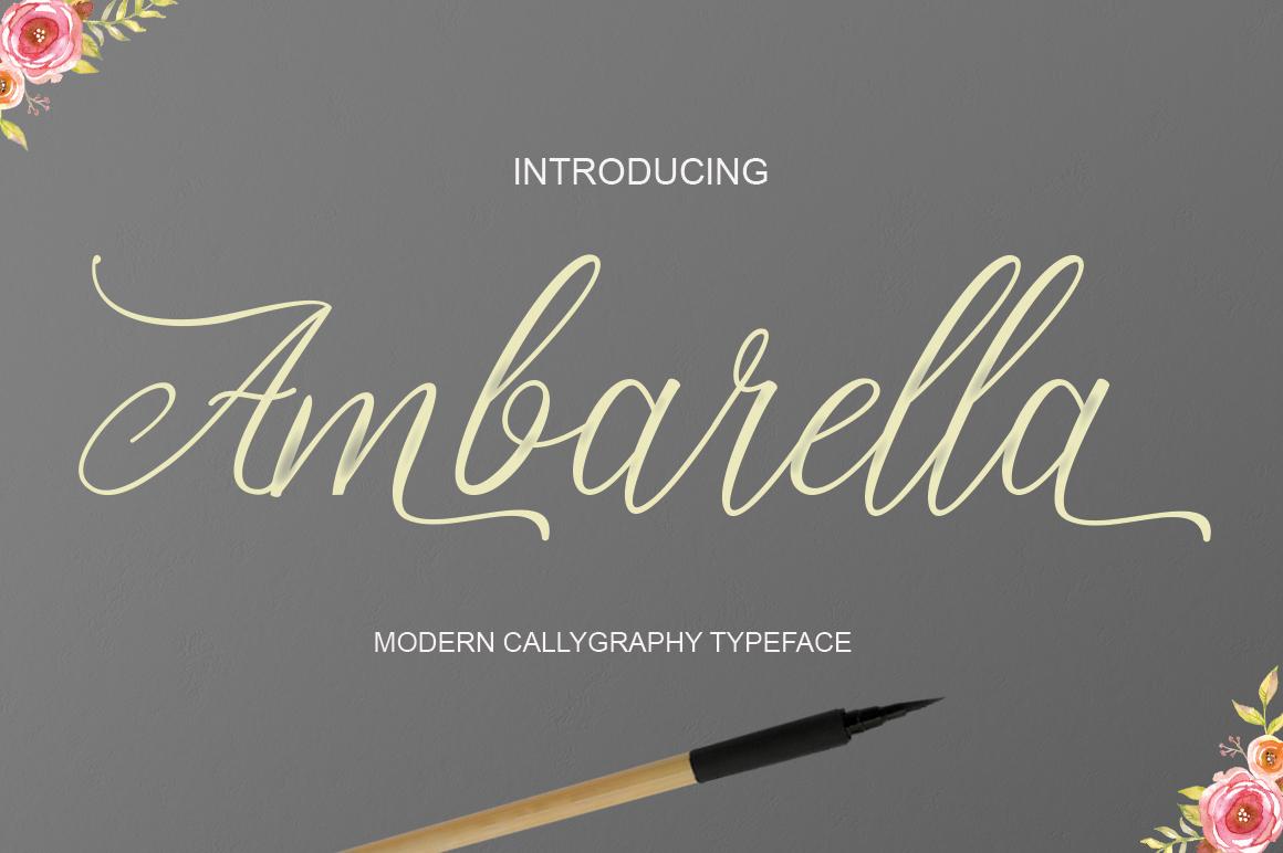 Ambarella example image 1