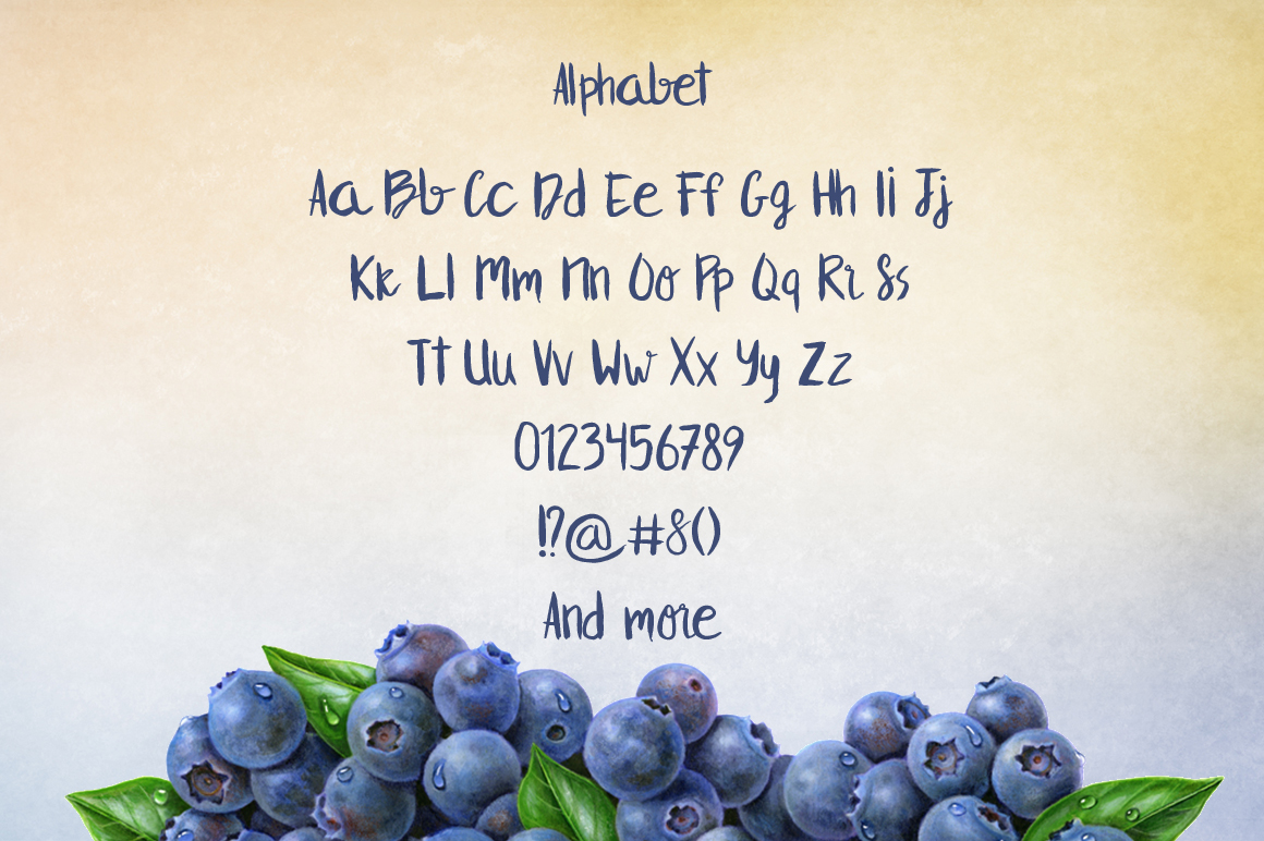 Blueberry example image 3