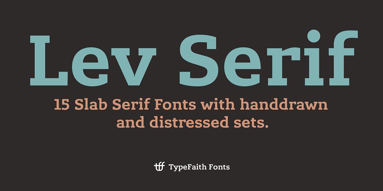 Lev Serif example image 8