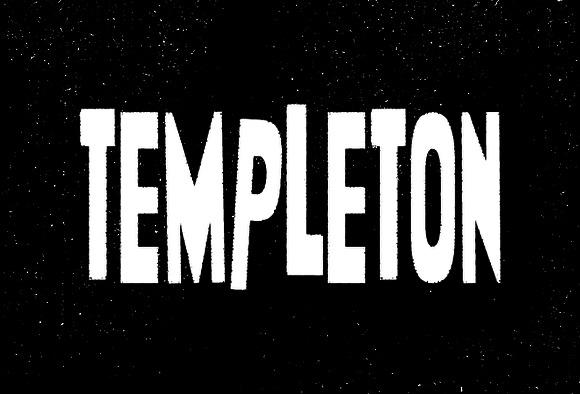 Templeton example image 7