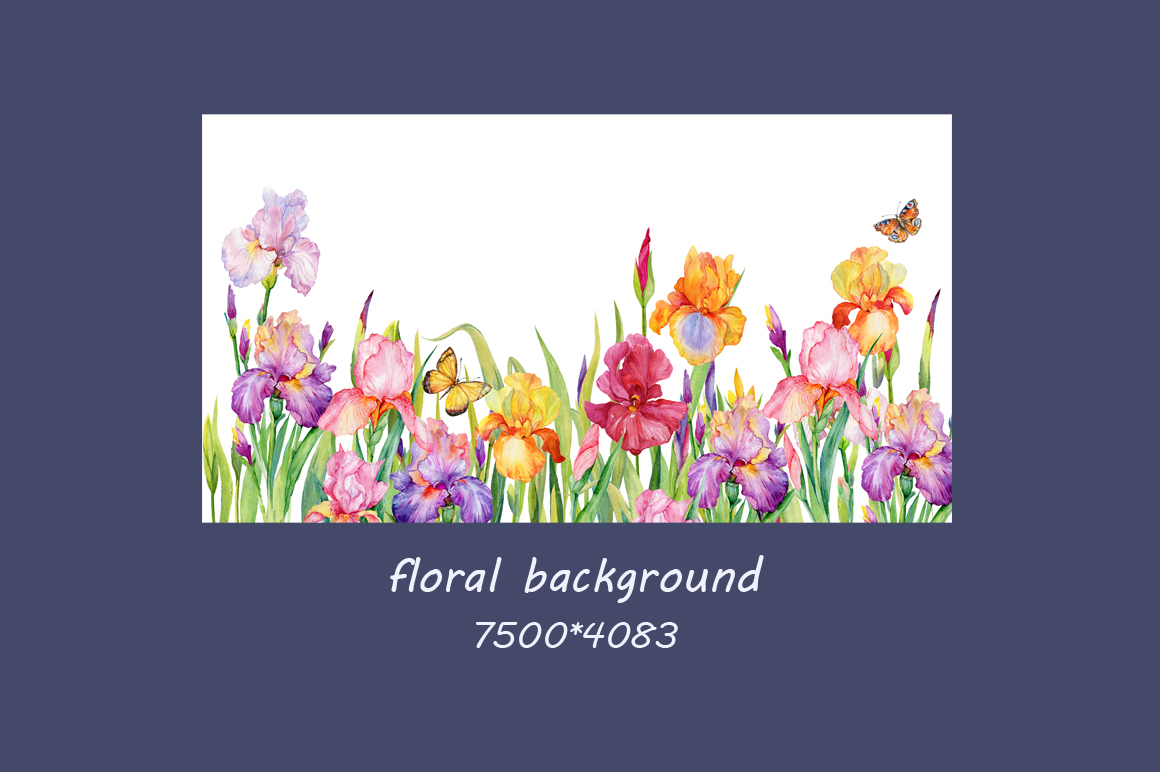 iris flowers. watercolor clipart example image 3