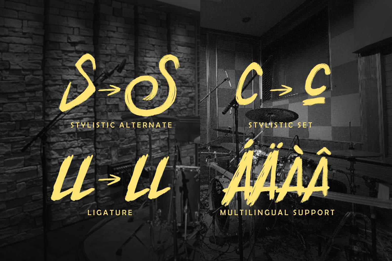 Stylistic Alternate. Stylistic Set. Ligature. Multilingual Support