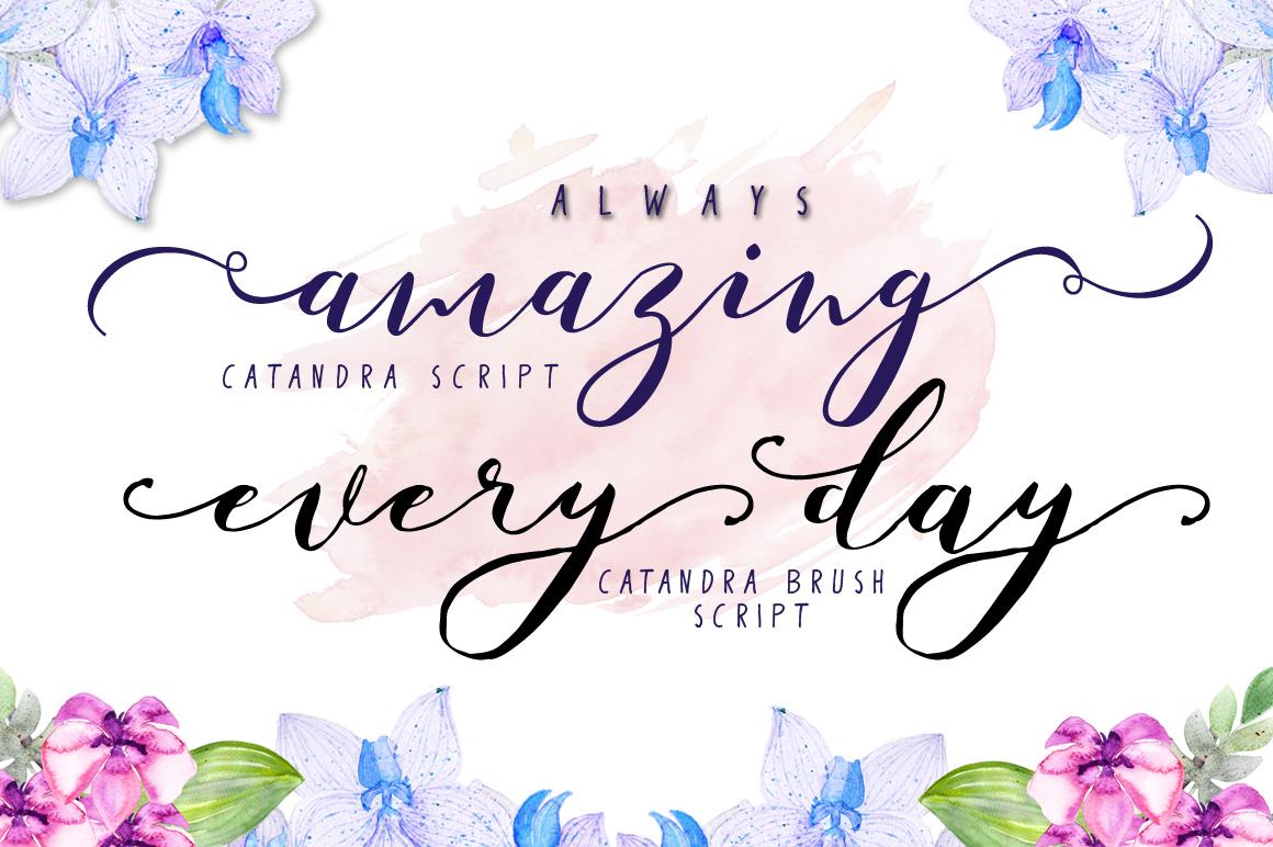 Catandra Script example image 2