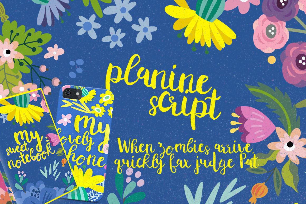 Planine Script example image 3
