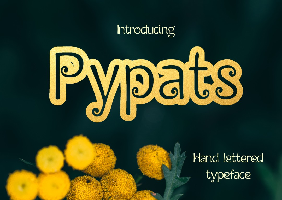 Pypats font example image 5