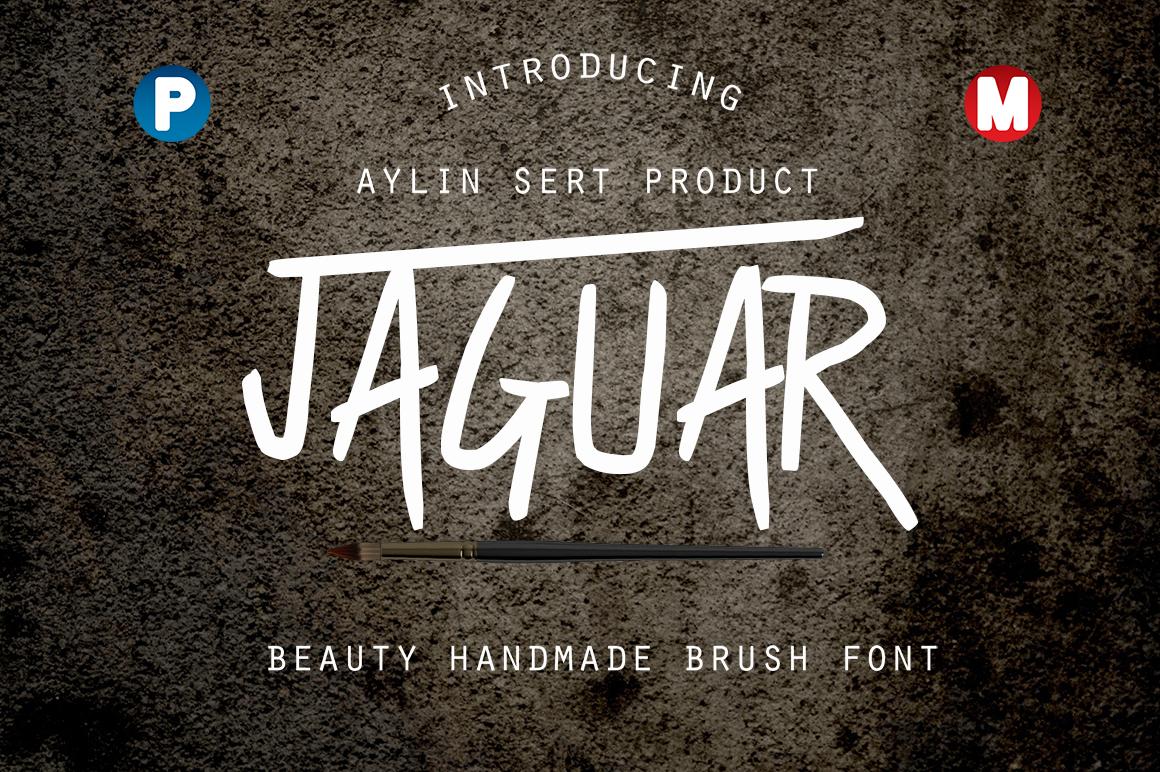 Jaguar example image 1