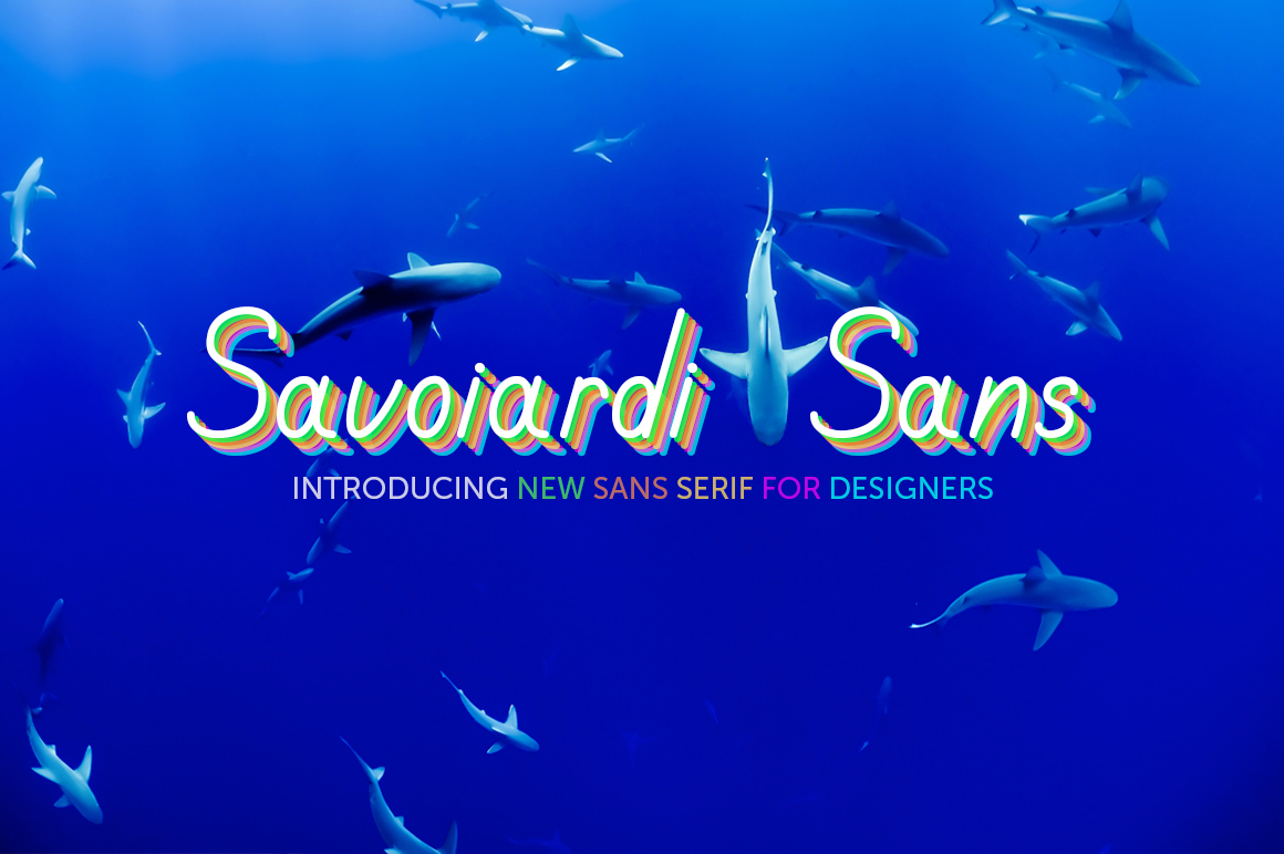 Savoiardi Sans example image 7