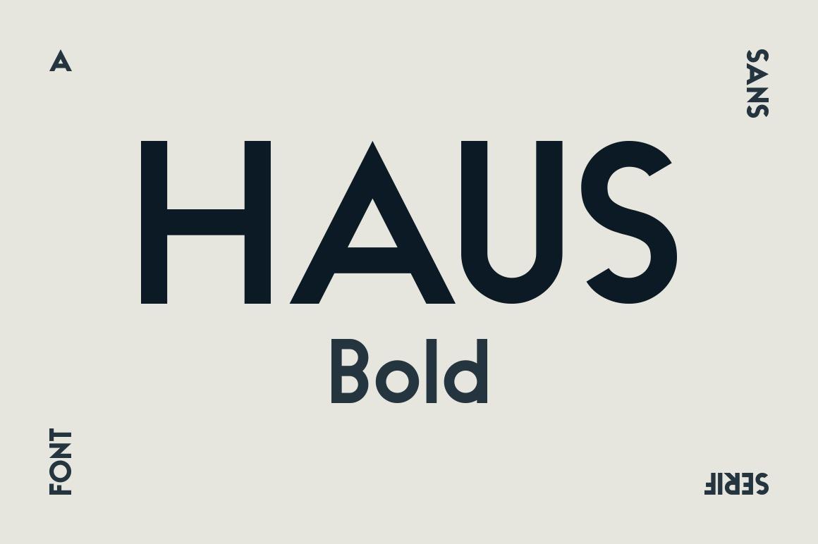 HAUS Sans Bold example image 1