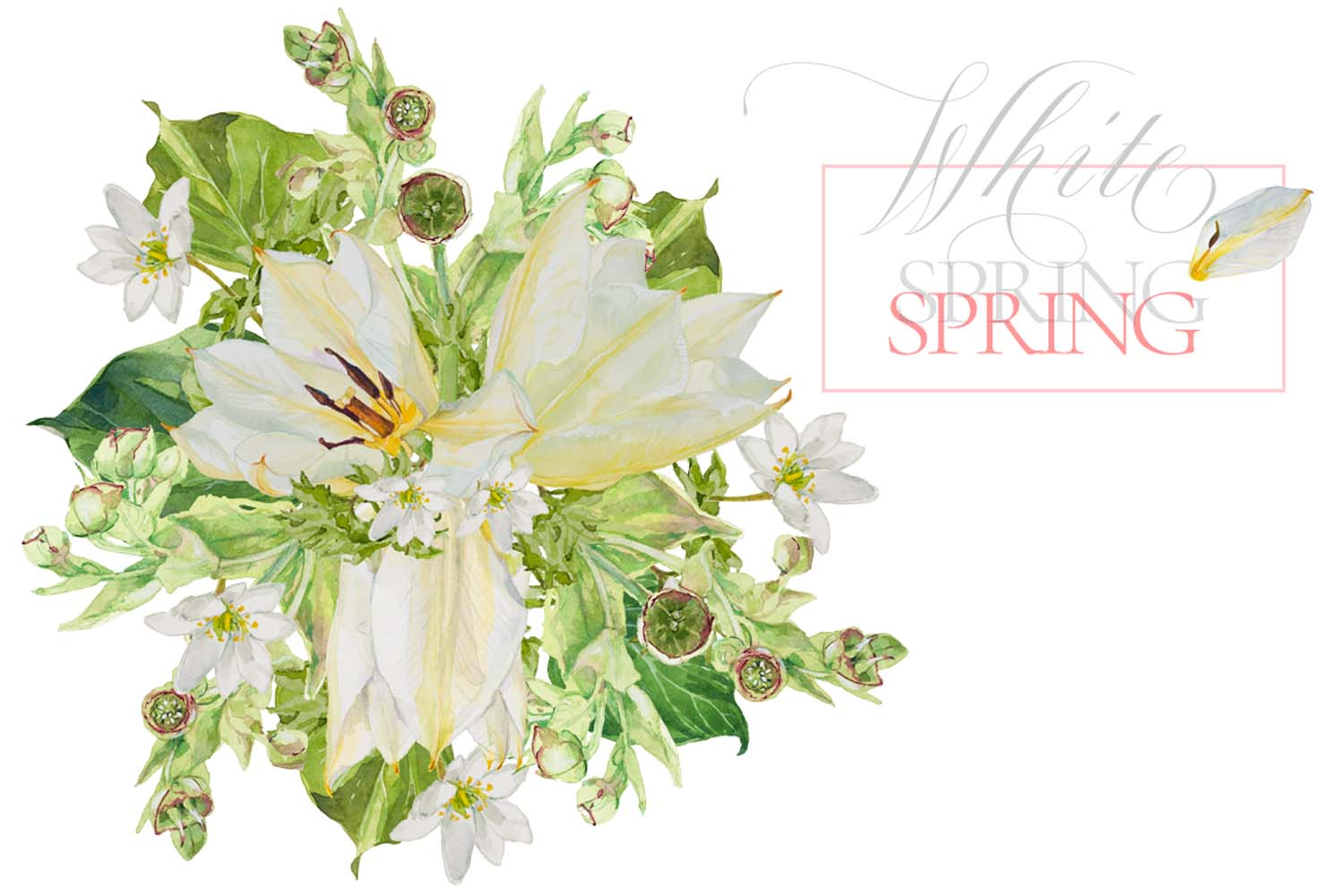 White Watercolor Bouquets & Wreaths example image 6