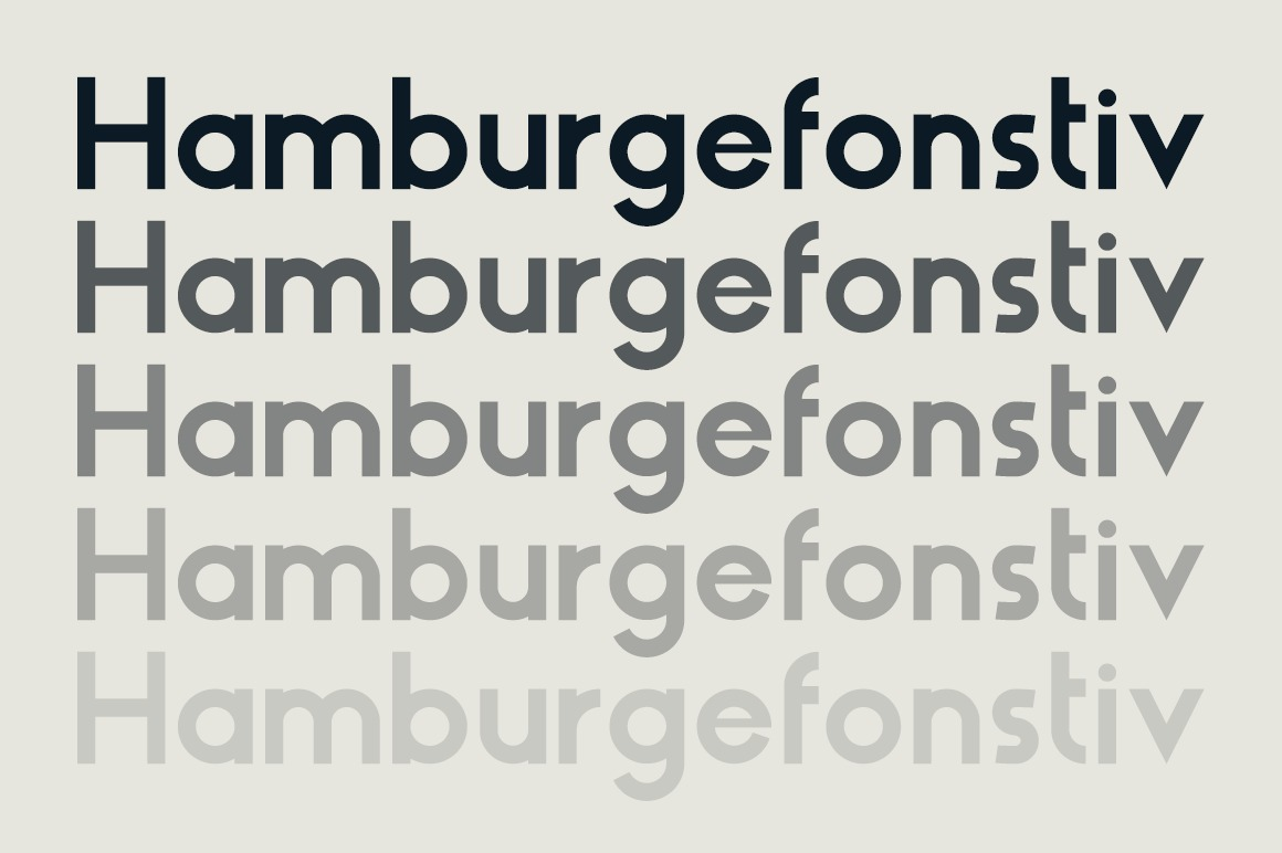 HAUS Sans Bold example image 2