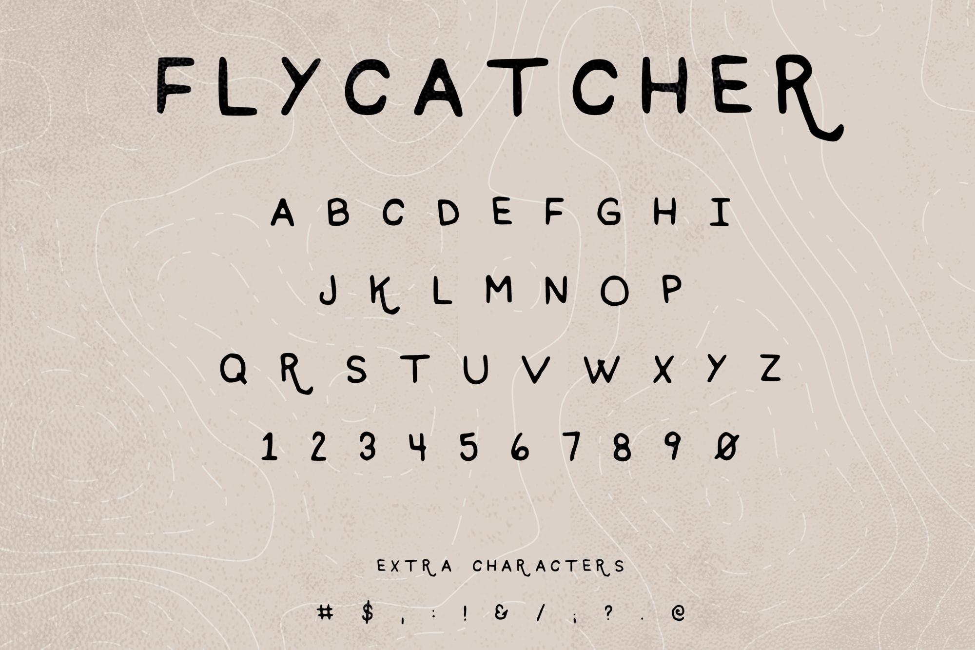 Flycatcher Characters