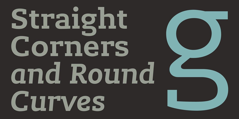 Lev Serif example image 4