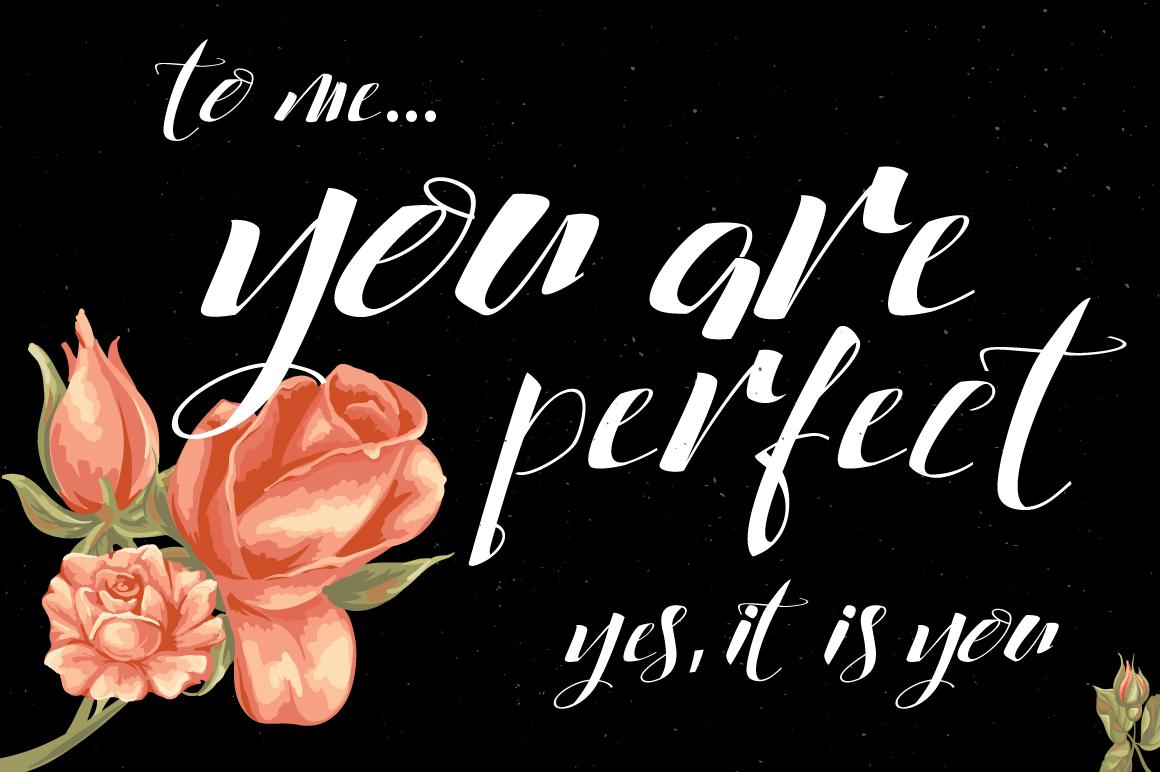 Cataleya Typeface (Full) example image 4