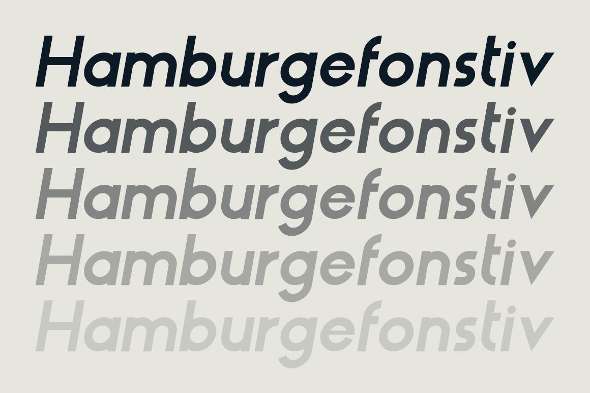 HAUS Sans Bold example image 3
