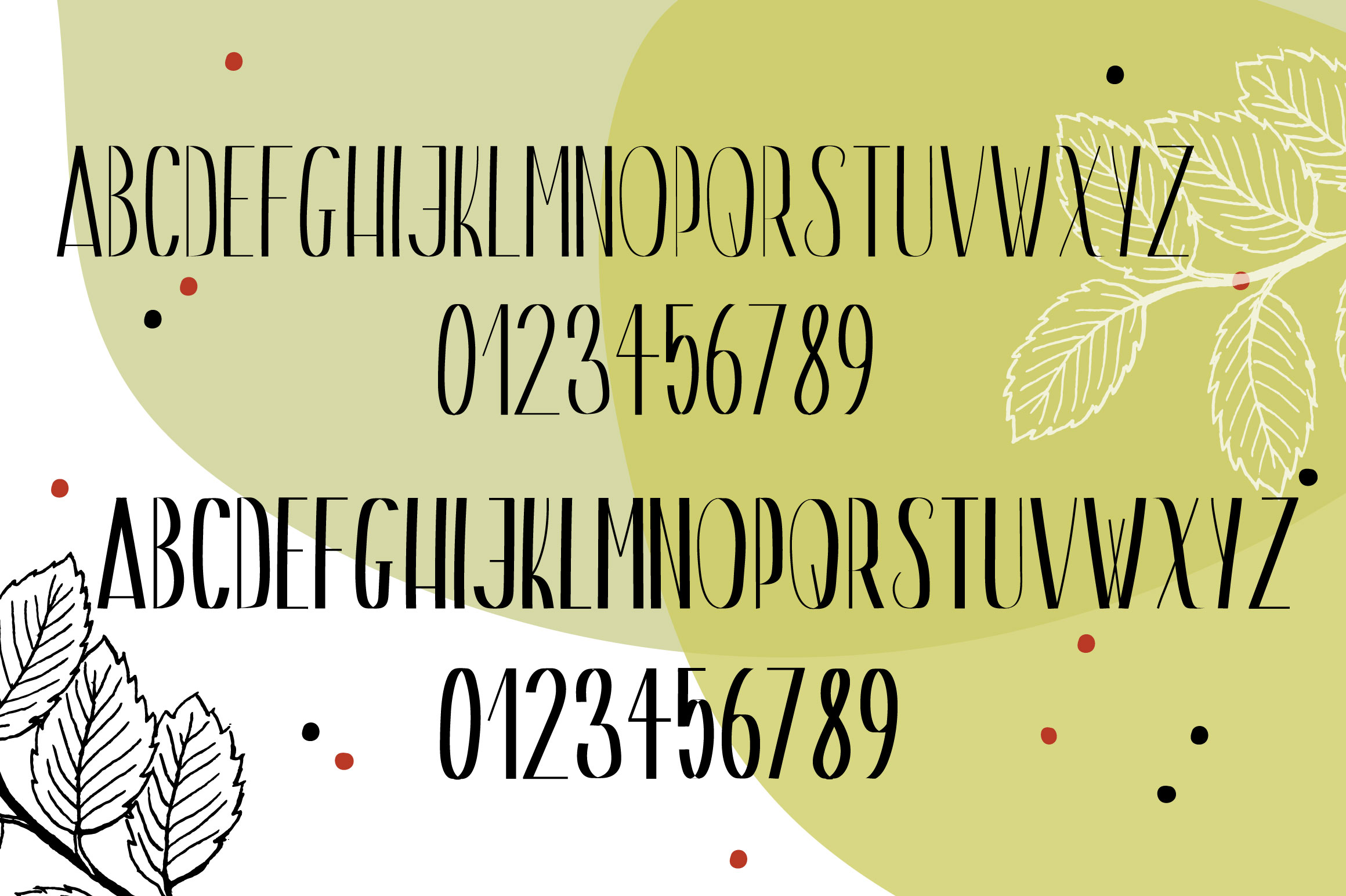 Gin And Tonic | Sans Serif Font Duo example image 2