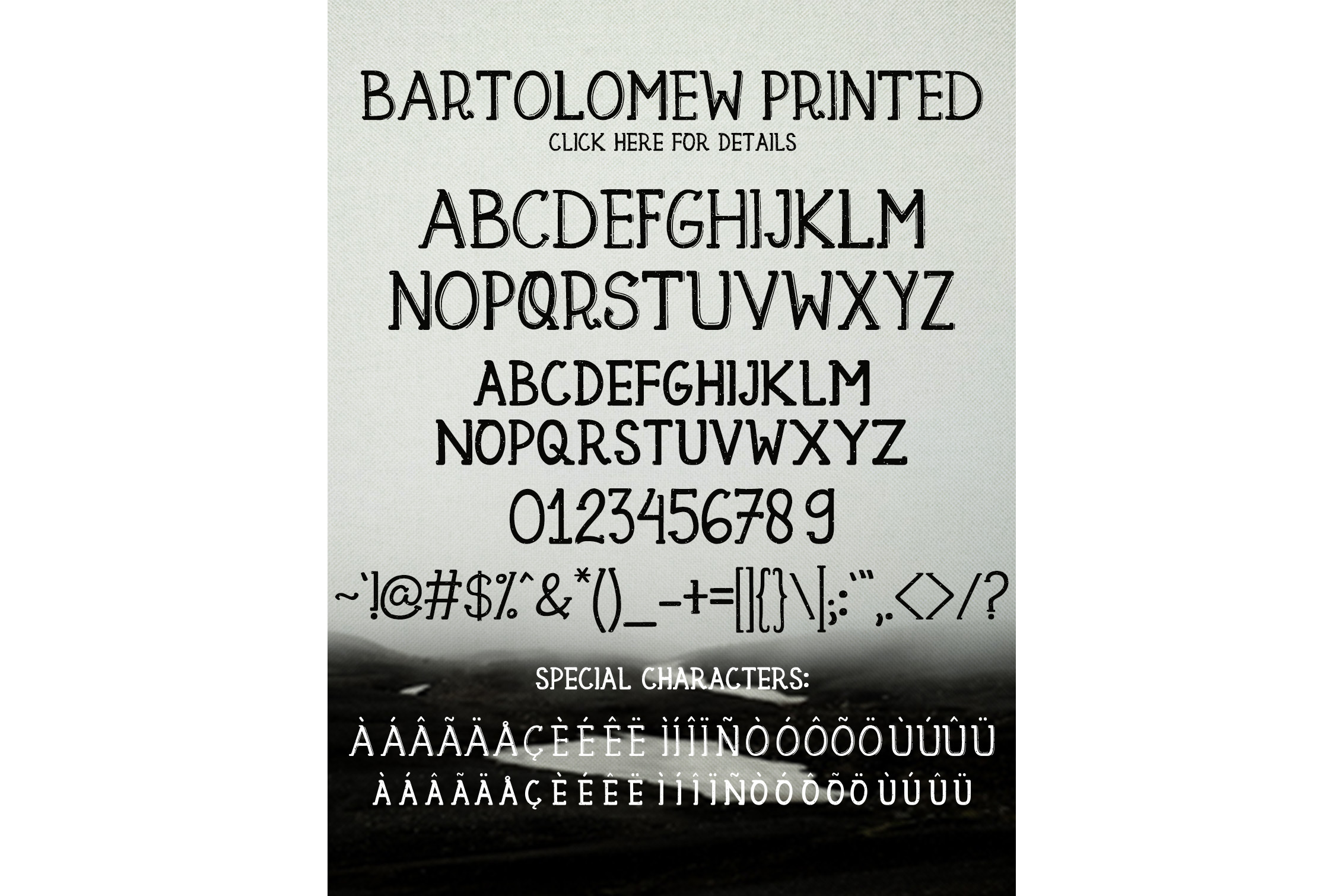 Bartolomew example image 6