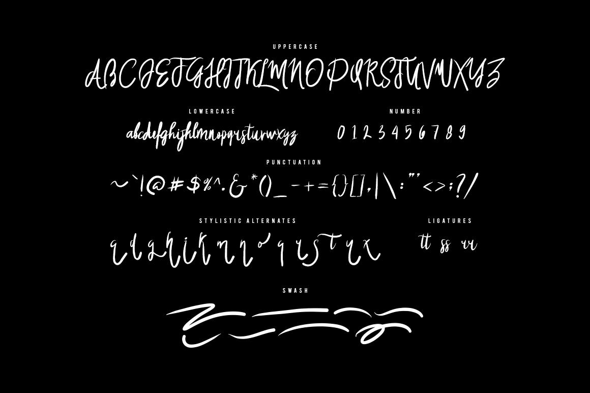 Wosser Typeface + Swash example image 5