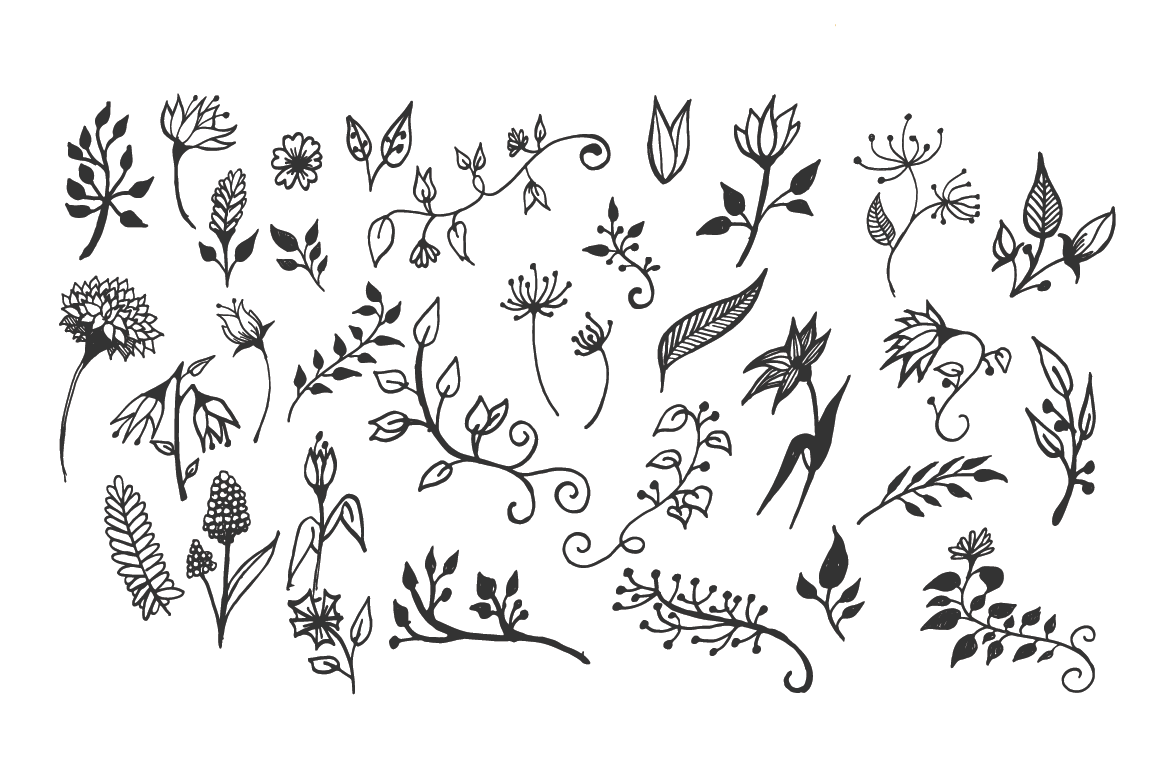 150 Hand-Drawn Floral Illustrations example image 6