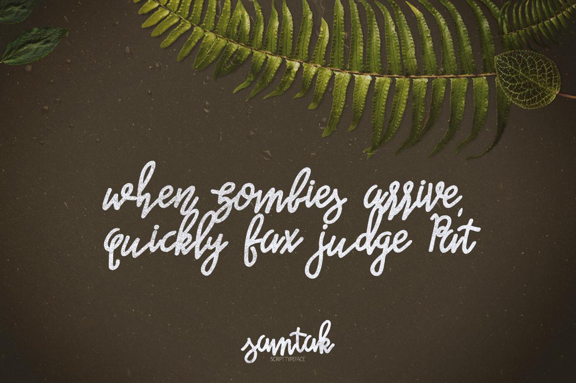 Samtak Script example image 2